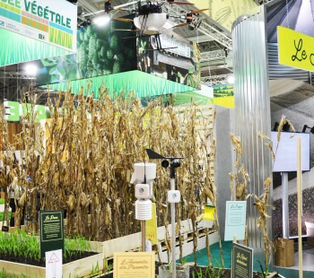 Salon International de l'Agriculture 2020 - Les innovations céréalières